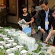 Các mô hình dự án bất động sản tại Hà Nội. (Ảnh: Hoàng Lâm/TTXVN)