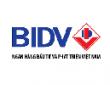 Ngân hàng Bidv tuyển dụng 2019