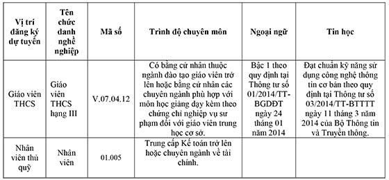 Trường THCS Nguyễn Văn Luông, Quận 6, TP.HCM tuyển dụng viên chức năm 2020
